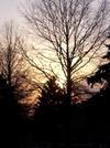 Last_sunset_2007